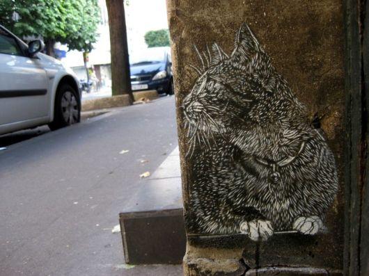 Amazing Street Art Photos