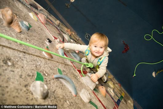 Two-Year-Old Conquers The Internet With Her Incredible Climbing Skills