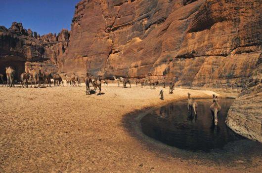 Guelta d'Archei - The Hidden Treasure Of Sahara