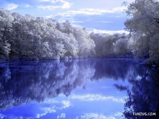 Beautiful Reflections in the Water