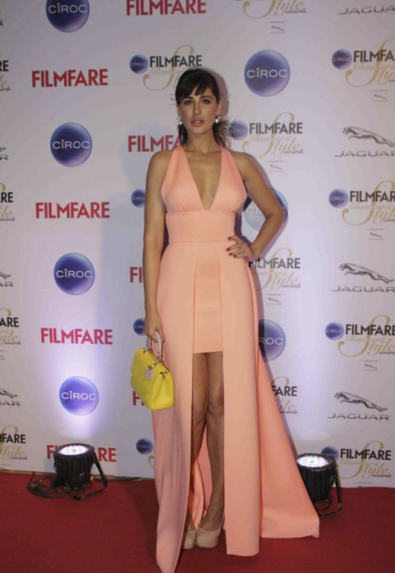 Indian Celebrities At Ciroc Filmfare Glamour Style Awards