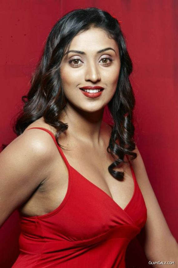 Spicy Megha Nair Posing In Red