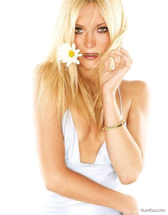 Click to Enlarge - Hollywood Beauty Kate Hudson Walls